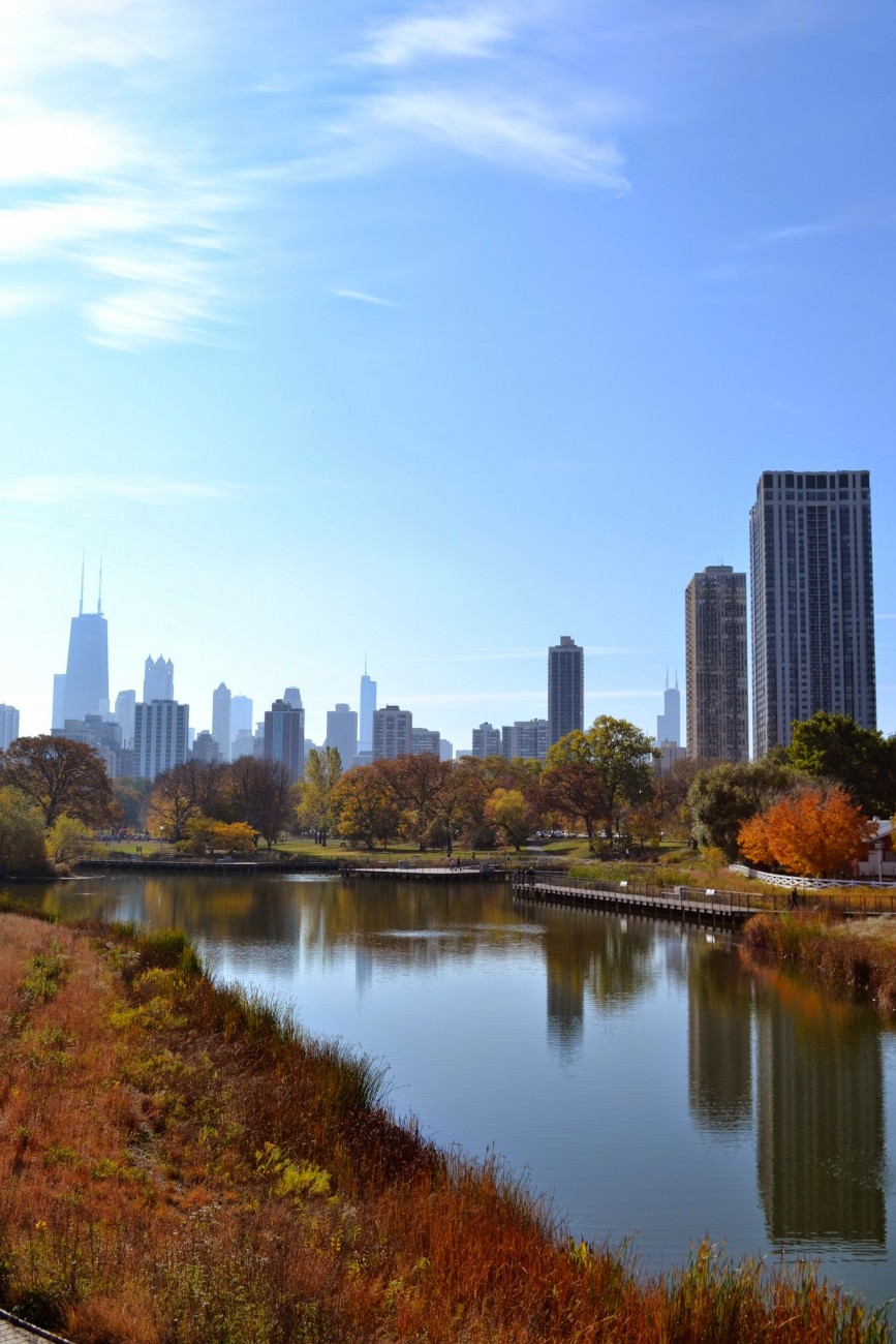 southpondlincolnpark